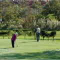 自慢のパークゴルフ場:画像